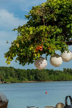 Three paper lanterns hanging form a lush green leafy tree overlooking a river in Bali photo