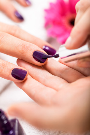 cosmetic lacquer: Woman having a nail manicure in a beauty salon with a closeup view of a beautician applying rich purple nail varnish with an applicator
