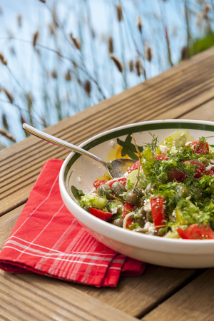 tilted view: Bowl of Marinated Greek Salad with Red Napkin, Tilted View