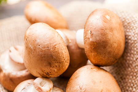 agaricus: Fresh whole uncooked brown Agaricus mushrooms on a hessian sack, one of the most cultivated edible mushrooms in the world and a popular ingredient in savory and vegetarian cooking Stock Photo