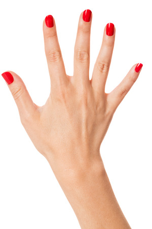 cosmetic lacquer: Woman with beautiful manicured red fingernails gracefully crossing her hands to display them to the viewer on a white background in a fashion, glamour and beauty concept