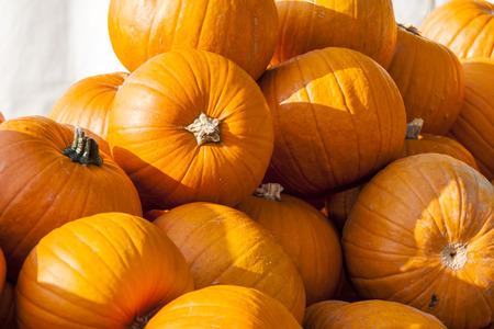 cucurbita: Halloween big Halloween cucurbita pumpkin pumpkins from autumn harvest on a market Stock Photo