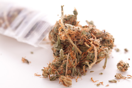 psychoactive: Close up Dried Cannabis or Marijuana Leaves Used for Psychoactive Drug or Medicine on Top of the Table