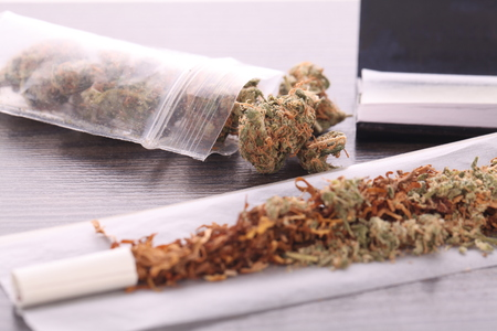 ganja: Close up Dried Cannabis Leaves on a Resealable Cellophane Wrapper and a Rolling Paper with Filter on Top of the Table