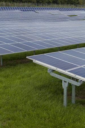 sun energy: Field with blue siliciom solar cells alternative energy to collect sun energy