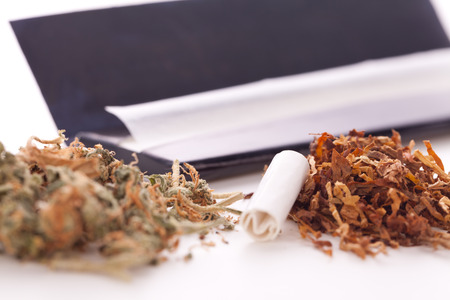 rolling paper: Close up Dried Cannabis Leaves on a Resealable Cellophane Wrapper and a Rolling Paper with Filter on Top of the Table