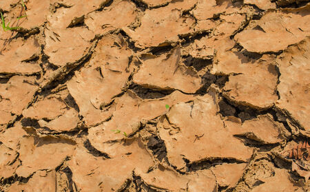 desertification: cracked soil,Drought is a natural cause cracks on the ground  Stock Photo