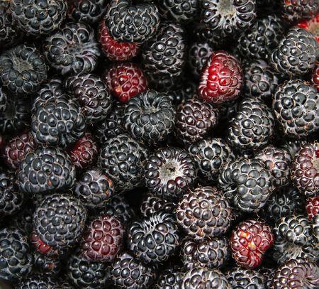 Ripe black raspberry textured background