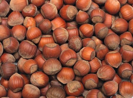 View of fresh hazelnuts - hazelnut background