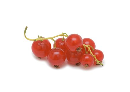 Red currant, isolated on a white background photo