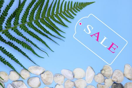 inscription discounts on a tropical summer background, the concept of a summer sale, a background for stocks