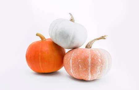 Pumpkins isolated on white with shadow and subtle reflection. Ripe orange, yellow and green white pumpkins. Harvest.