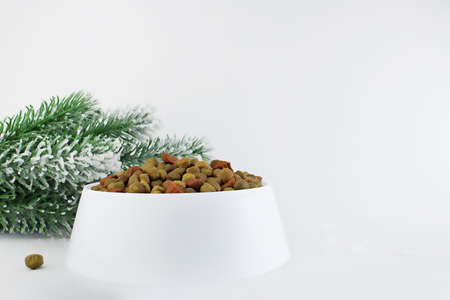 Food for a dog or cat. Dry food for kittens or puppies in a white bowl on a Christmas background. Concept - advertising of pet food for Christmas or New Year. Copy space