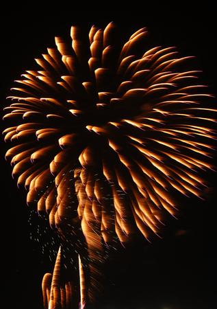 panoply: Colorful firework at hua hin, Thailand Stock Photo