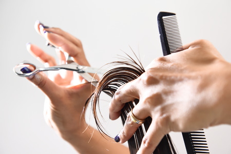 business style: Hands of a hair stylist trimming hair with a comb and scissors