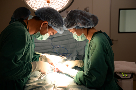 two veterinarian surgeons in operating room photo