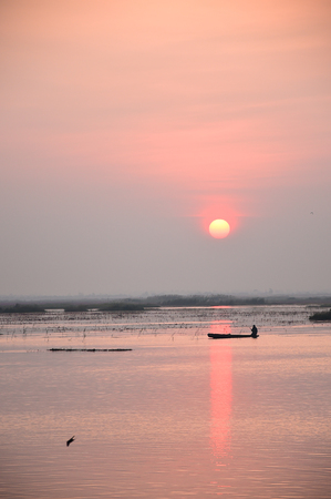 thani: Sunrise over the sea of pink lotus in Udon Thani, Thailand