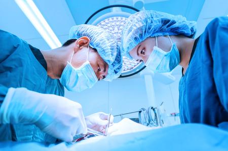 手術室の 2 つの獣医外科医を青いフィルターで取る