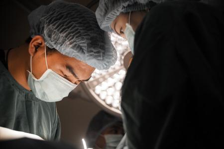 オペレーティング ルーム、選択的に 2 つの獣医外科カラー テクニック 写真素材