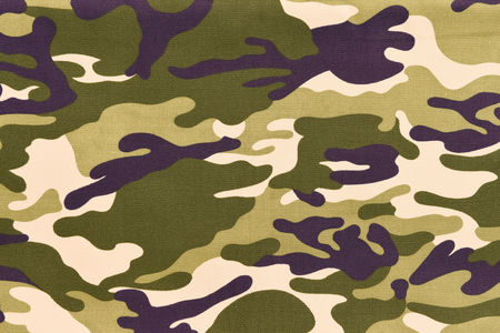 munition: Camouflage pattern background or texture.