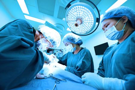 獣医外科手術室でグループの芸術的な照明と取るし、青のフィルター