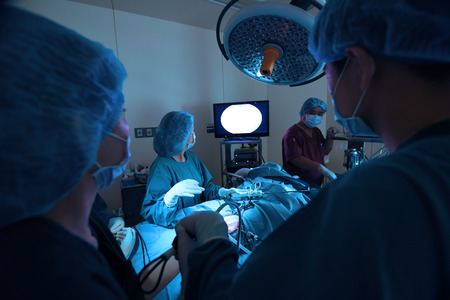 veterinarian doctor in operation room for laparoscopic surgical take with art lighting and blue filter