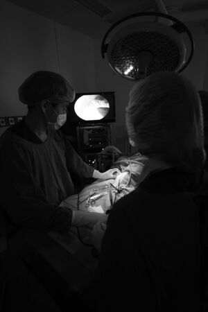 laparoscopic: veterinarian doctor in operation room for laparoscopic surgical take with selective color technique and art lighting