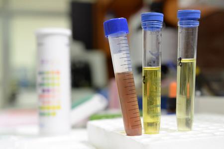 研究室では化学のテストをしている科学者 写真素材