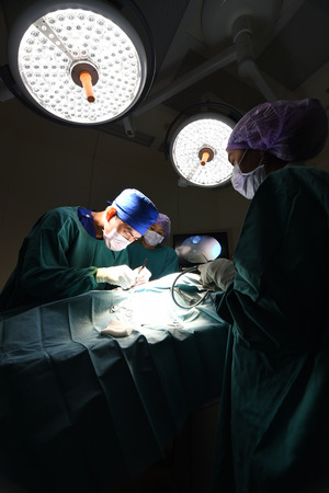 laparoscopic: group of veterinarian doctor in operation room for laparoscopic surgical