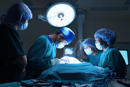 cirujano: grupo de cirugía veterinaria en la sala de operación toma con iluminación arte y filtro azul