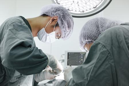cirujano: dos cirujanos veterinarios en quirófano toman con la técnica de color selectiva y la iluminación del arte