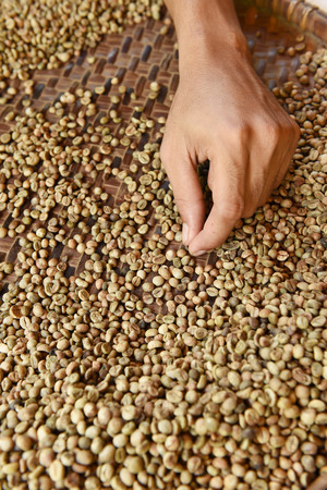 colombian food: Coffee beans for backgrounds or textures Stock Photo