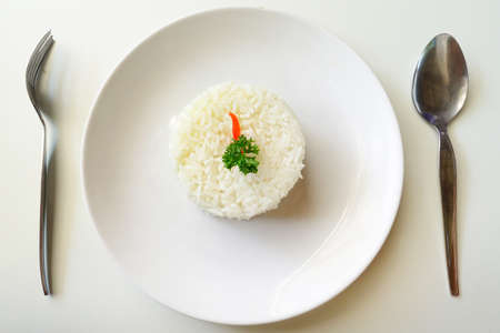 rice plate: Steamed rice closed up on the dish Stock Photo