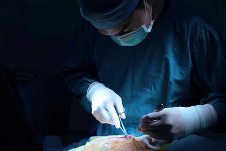 veterinarian surgery in operation room take with art lighting and blue filter