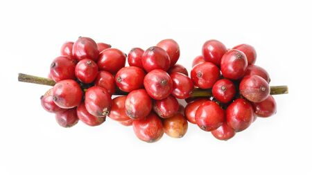 close up of fresh coffee beans isolated on white background Reklamní fotografie