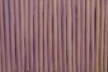Carnauba Sticks 2 Фото со стока - 8043324