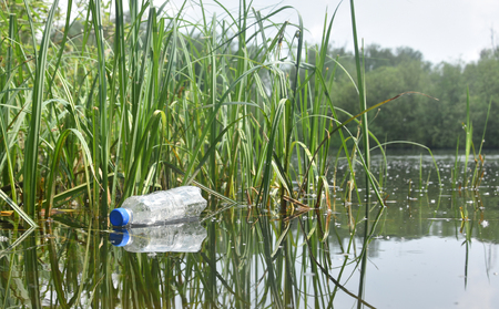 A carelessly thrown away plastic bottle nestles in the reeds at the side of a picturesque lake