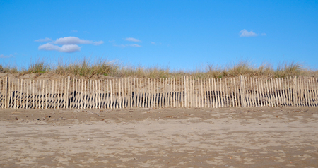 Fencing keeps people out of an area of fragile sand dunes