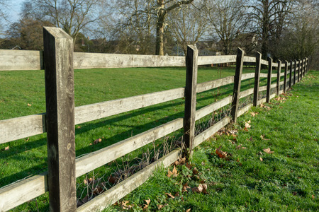 A wooden fence stretches off into the distance in a park