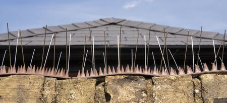Anti-climbing spikes installed on the top of a brick wall to deter people climbing over