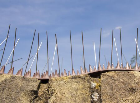 A row of anti-climbing spikes on the top of a brick wall to deter people climbing entering a property