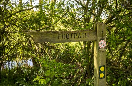 A wooden footpath sign in a shady wooded area with way markers and a no cycling sign on the post