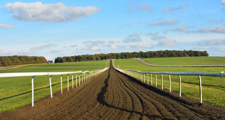 A view looking up the training gallops on Newmarket Heath, Suffolk, UK Zdjęcie Seryjne