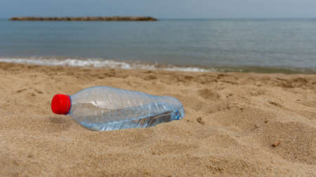 A discarded plastic water bottle lies partially buried in sand on a beach after being washed up