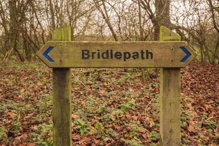 A wooden bridleway sign indicates the direction of the path in woodland