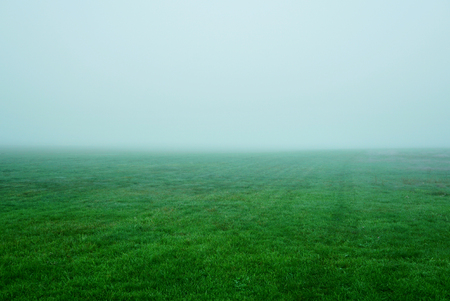 Green grass in the morning mist. Thick fog over green grass. USA, Michigan, Grand Haven