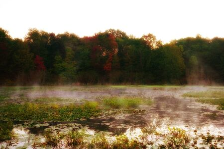 Fairy forest behind a foggy lake. Water lilies grow on the surface. Mystical Dawn in USA, Michigan Foto de archivo - 131976398