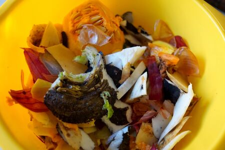 Compost of mix vegetables in yellow container close-up 版權商用圖片