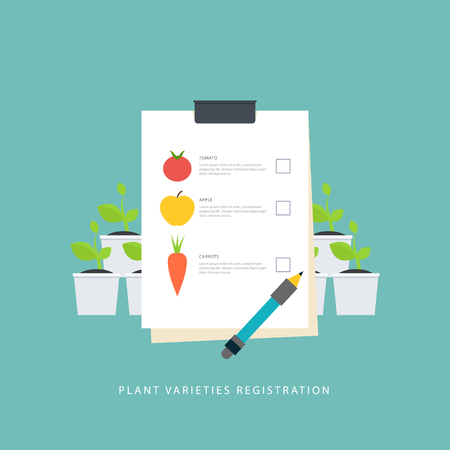 new plant: Plant varieties registration. Colorful concept which shows accounting of seedlings and new types. Vector scene in flat style. Perfect for agricultural or scientific brochures, banners, infographic. Illustration
