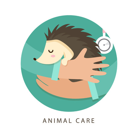 Care of animals. Hands of a veterinarian keep a hedgehog. Colorful concept perfect for medical or veterinary flyer, poster. Design illustration for animal care center, veterinary or pets clinics.